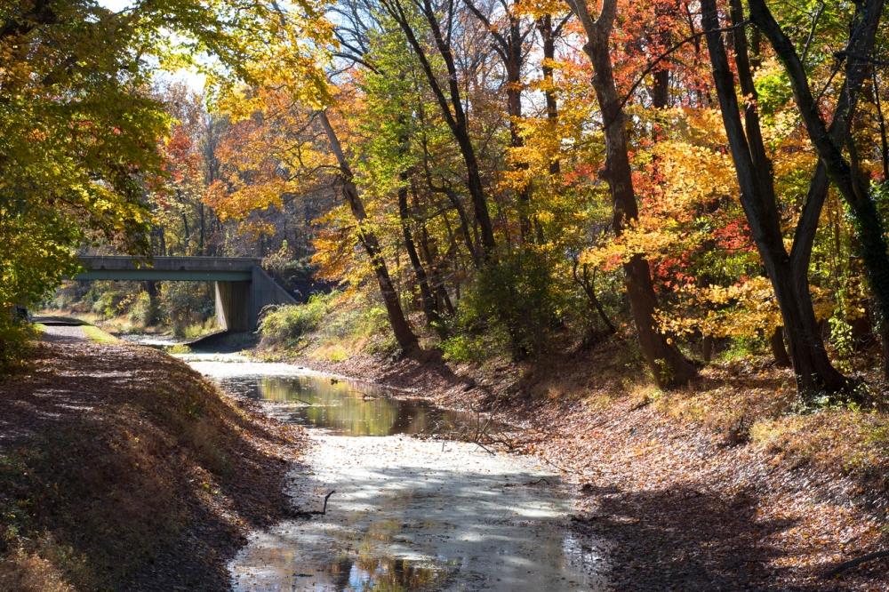 Fall foliage along the Delaware Canal.jpg