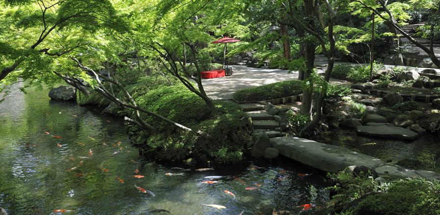 Happoen Garden Tokyo.jpg