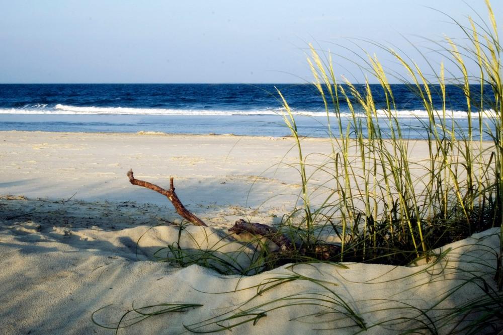 Tybee-Shoreandoats
